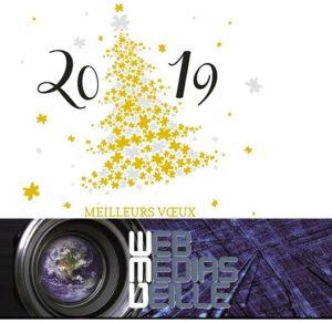 WMV Voeux 2019 - Copie